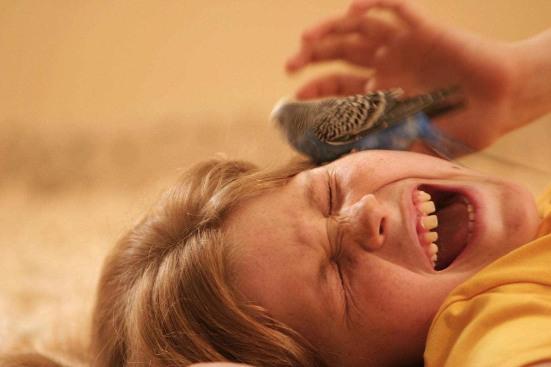 Fletch tickling Anna
